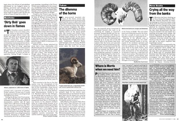 Article Preview: Where is Morris when we need him?, November 1980 | Maclean's