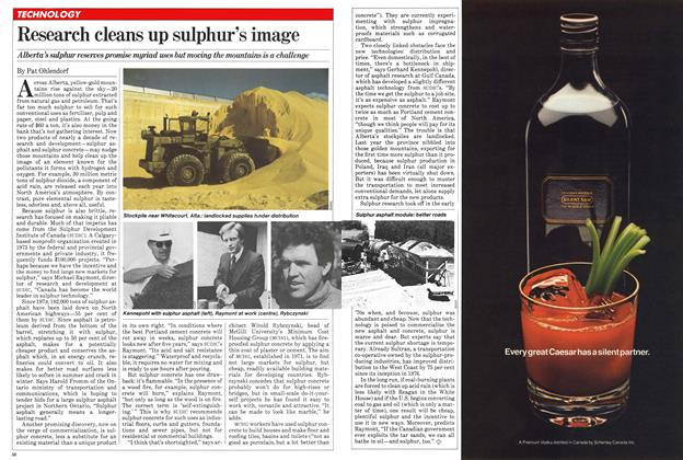 Article Preview: Research cleans up sulphur's image, March 1981 | Maclean's
