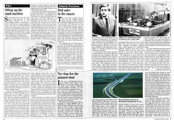 Article Preview: No visas for the gizzard shad, May 1981 | Maclean's