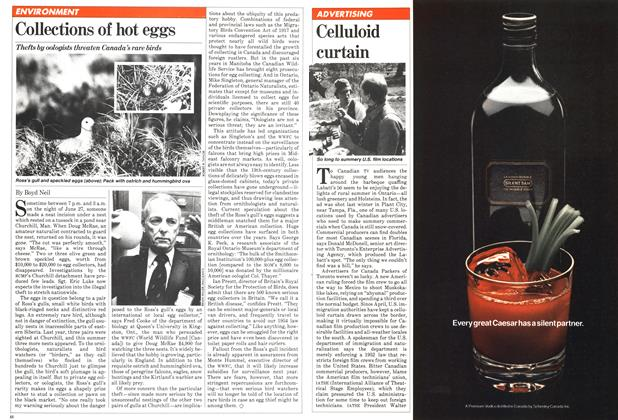 Article Preview: Celluloid curtain, September 1981 | Maclean's