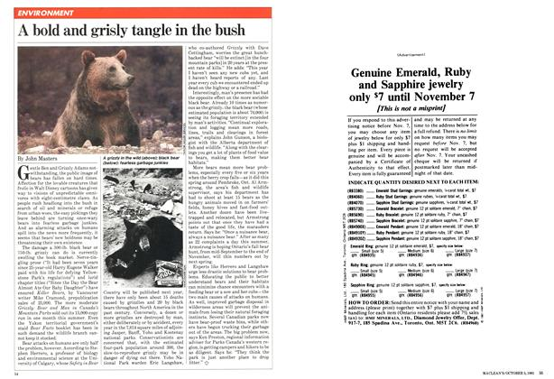 Article Preview: A bold and grisly tangle in the bush, October 1981 | Maclean's