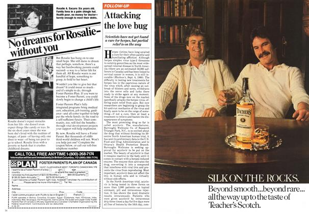 Article Preview: Attacking the love bug, November 1981 | Maclean's