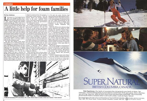 Article Preview: A little help for foam families, January 1982 | Maclean's