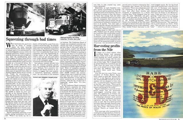 Article Preview: Squeezing through bad times, August 1982 | Maclean's