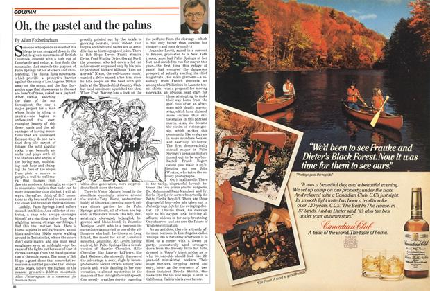 Article Preview: Oh, the pastel and the palms, October 1982 | Maclean's