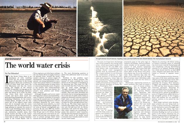 Article Preview: The world water crisis, December 1982 | Maclean's