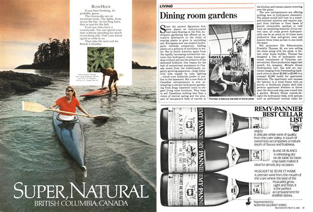 Article Preview: Dining room gardens, May 1983 | Maclean's