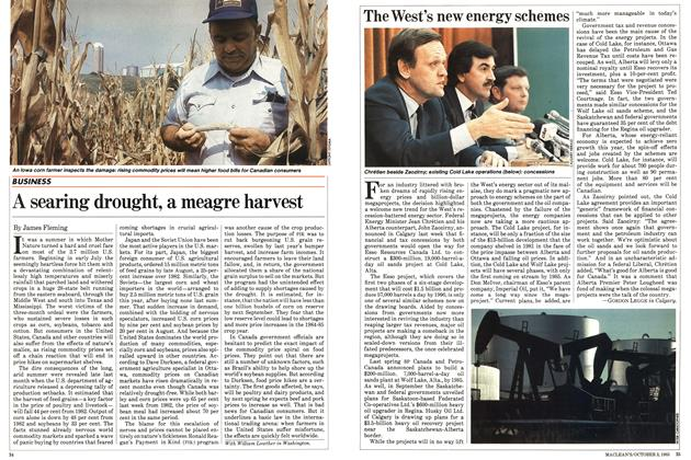 Article Preview: The West's new energy schemes, October 1983 | Maclean's