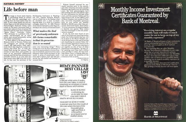 Article Preview: Life before man, November 1983   Maclean's