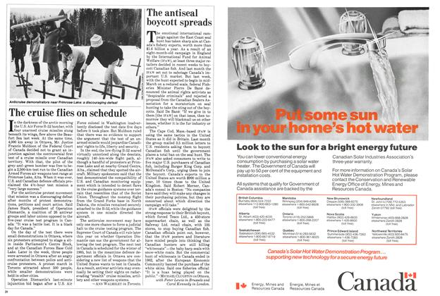 Article Preview: The cruise flies on schedule, March 1984 | Maclean's
