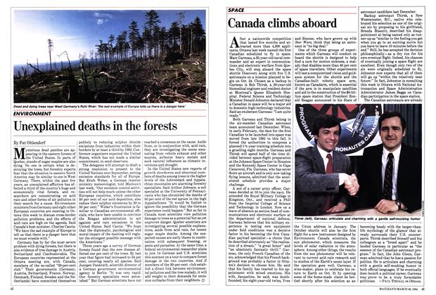 Article Preview: Unexplained deaths in the forests, March 1984 | Maclean's