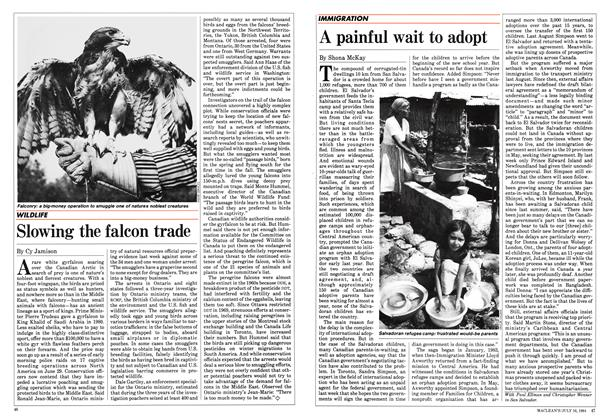 Article Preview: A painful wait to adopt, July 1984 | Maclean's