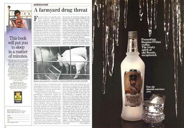 Article Preview: A farmyard drug threat, October 1984   Maclean's