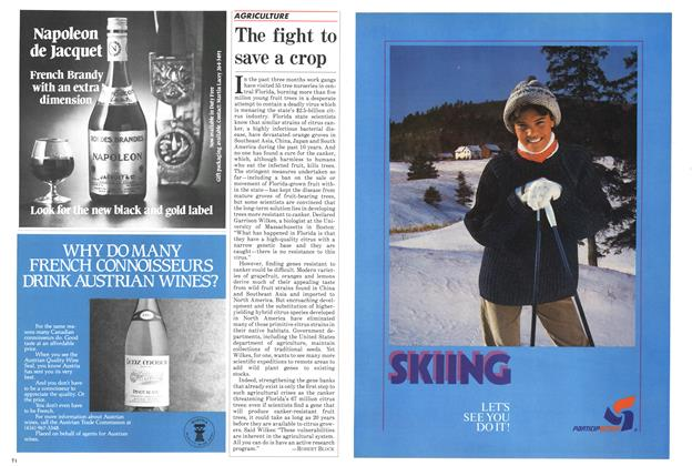Article Preview: The fight to save a crop, November 1984 | Maclean's