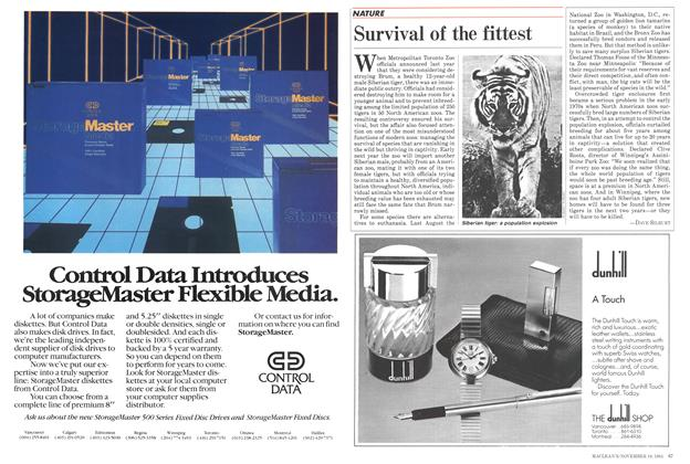 Article Preview: Survival of the fittest, November 1984 | Maclean's