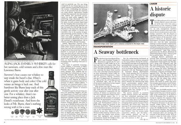 Article Preview: A Seaway bottleneck, December 1984   Maclean's