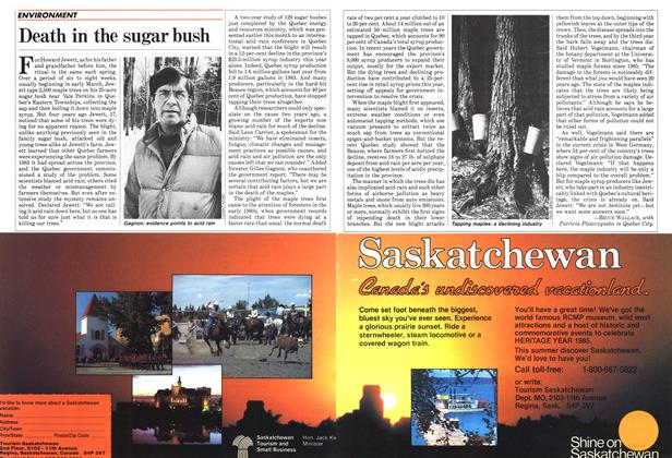 Article Preview: Death in the sugar bush, April 1985 | Maclean's