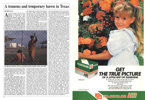 Article Preview: A tenuous and temporary haven in Texas, May 1985 | Maclean's
