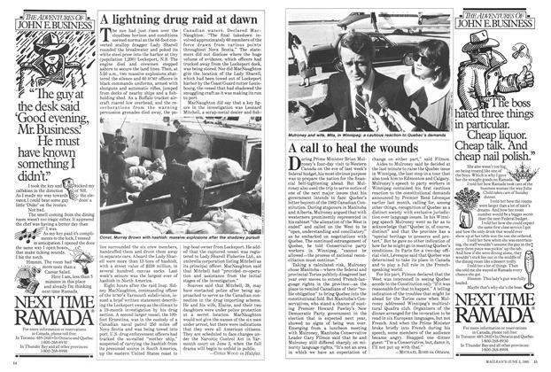 Article Preview: A call to heal the wounds, June 1985 | Maclean's