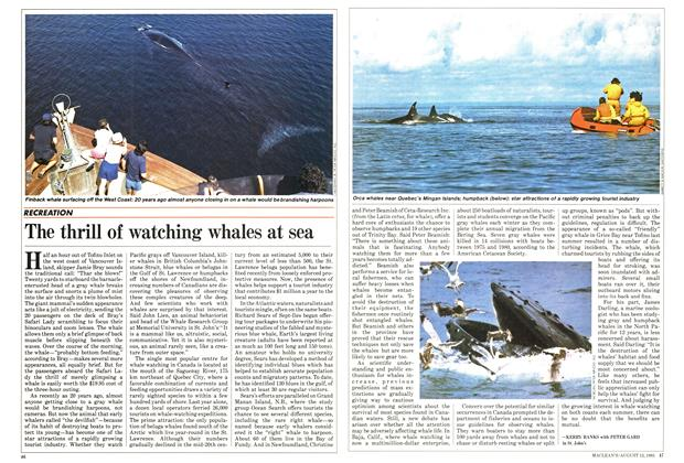 Article Preview: The thrill of watching whales at sea, August 1985 | Maclean's