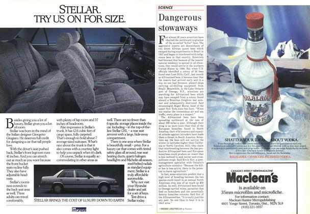 Article Preview: Dangerous stowaways, September 1985 | Maclean's