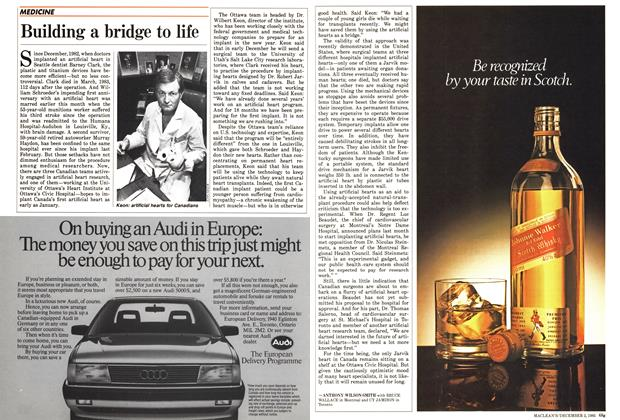 Article Preview: Building a bridge to life, December 1985 | Maclean's