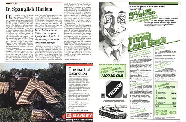 Article Preview: In Spanglish Harlem, November 1986 | Maclean's