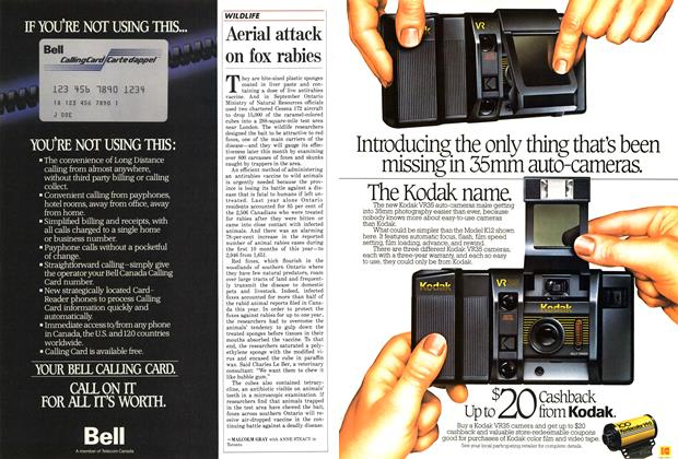 Article Preview: Aerial attack on fox rabies, December 1986 | Maclean's