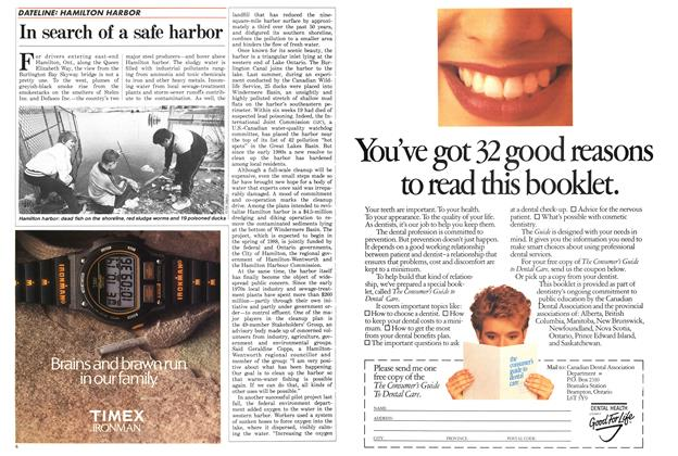 Article Preview: In search of a safe harbor, May 1987 | Maclean's