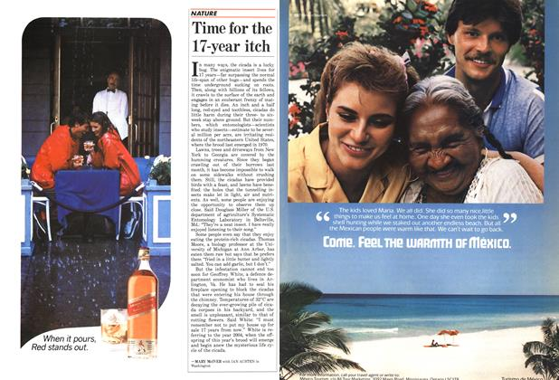 Article Preview: Time for the 17-year itch, June 1987 | Maclean's