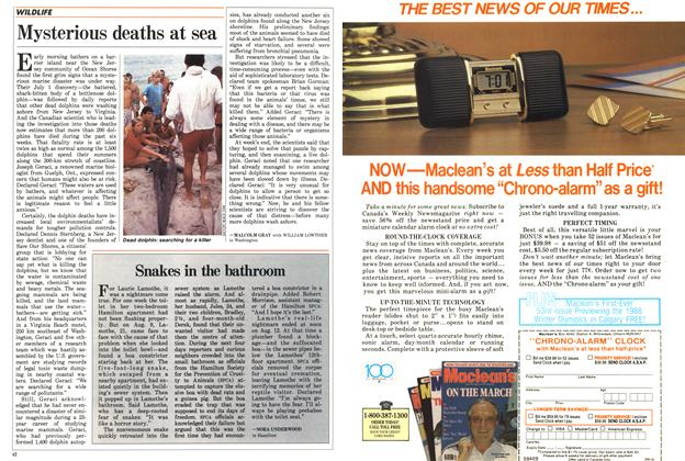 Article Preview: Mysterious deaths at sea, August 1987 | Maclean's