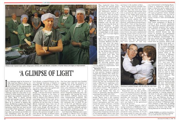 Article Preview: 'A GLIMPSE OF LIGHT', April 1988 | Maclean's