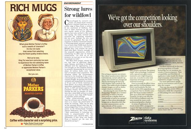 Article Preview: Strong lures for wildfowl, May 1988 | Maclean's