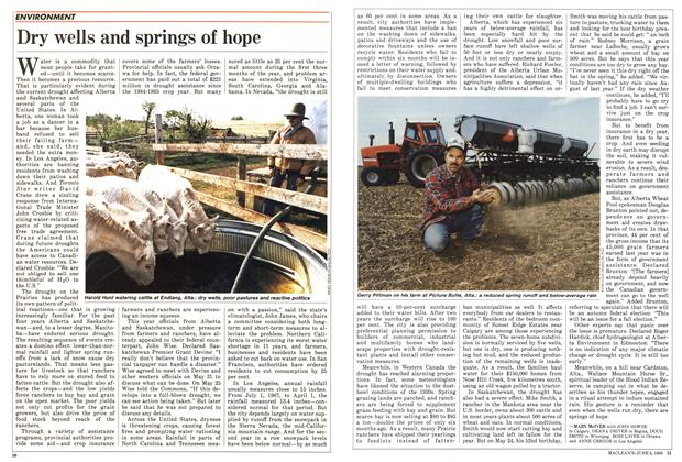 Article Preview: Dry wells and springs of hope, June 1988 | Maclean's