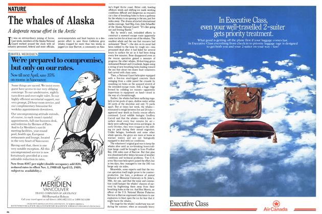 Article Preview: The whales of Alaska, October 1988 | Maclean's