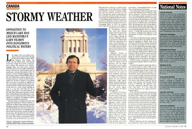 Article Preview: STORMY WEATHER, January 1989 | Maclean's