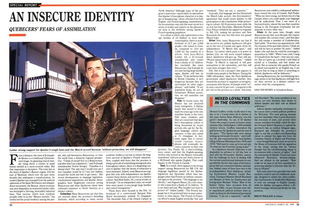 Article Preview: AN INSECURE IDENTITY, March 1989 | Maclean's