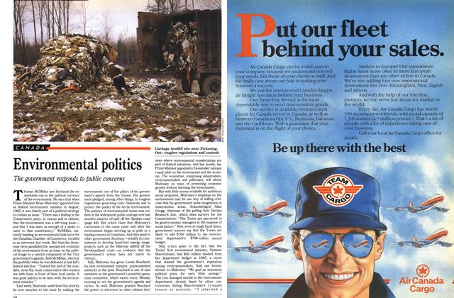 Article Preview: Environmental politics, April 1989 | Maclean's