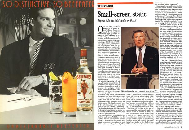 Article Preview: Small-screen static, June 1989 | Maclean's