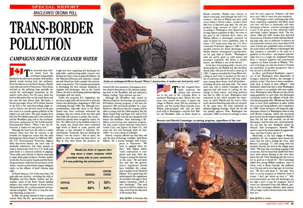 Article Preview: TRANS-BORDER POLLUTION, July 1989 | Maclean's