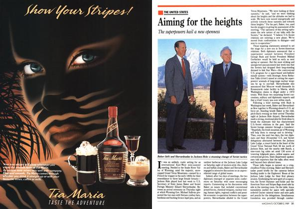 Article Preview: Aiming for the heights, October 1989 | Maclean's