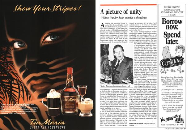 Article Preview: A picture of unity, October 1989 | Maclean's