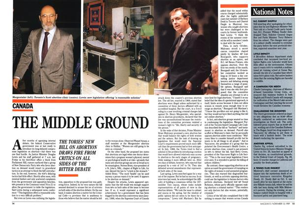 Article Preview: THE MIDDLE GROUND, November 1989 | Maclean's
