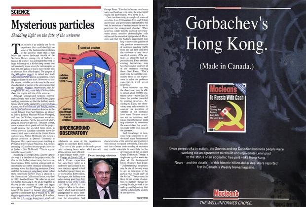 Article Preview: Mysterious particles, February 1990 | Maclean's