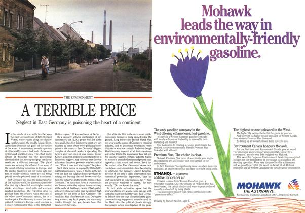 Article Preview: A TERRIBLE PRICE, September 1990 | Maclean's