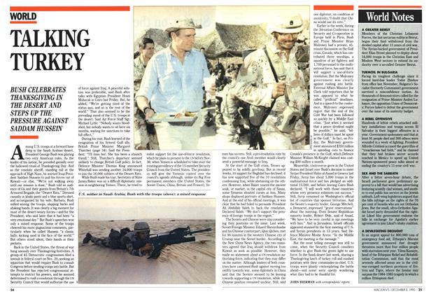 Article Preview: TALKING TURKEY, December 1990   Maclean's