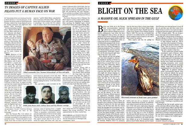 Article Preview: BLIGHT ON THE SEA, February 1991 | Maclean's