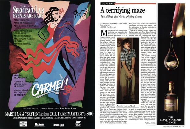 Article Preview: A terrifying maze, November 1991 | Maclean's