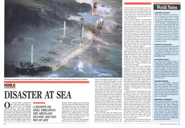 Article Preview: DISASTER AT SEA, January 1993 | Maclean's