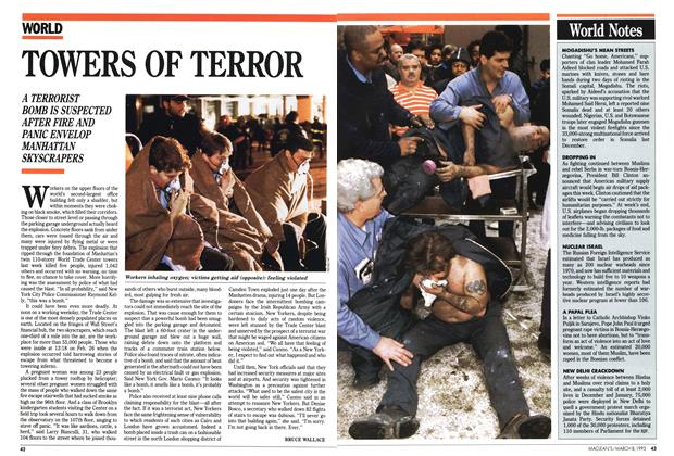 Article Preview: TOWERS OF TERROR, March 1993 | Maclean's